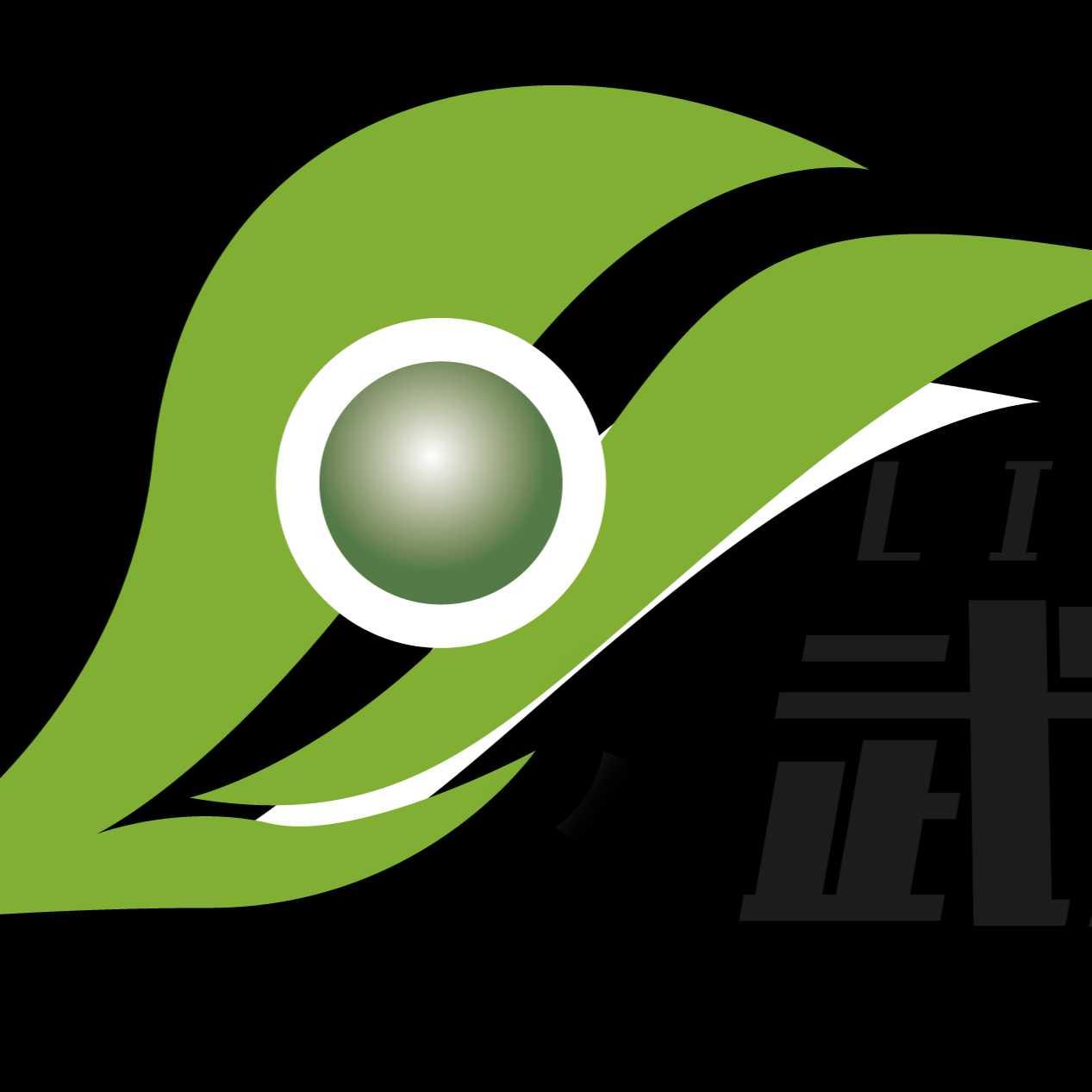 武汉领航者科技有限公司